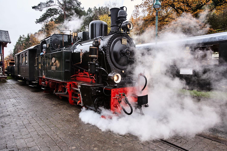Wohnen am Klingertal Meissen - Schmalspurbahn Eisenbahn Lok Lokomotive Bahn Bahnfarten